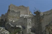 Roman Calesi restoration