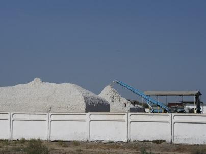 That's one big pile of kapok