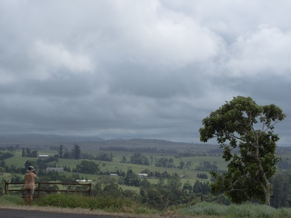 Atherton Tablelands ... Sort of like Yorkshire