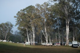 Typical Queensland free campsite